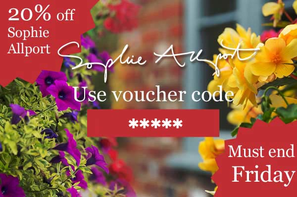 Sophie Allport 20% discount must end this Friday